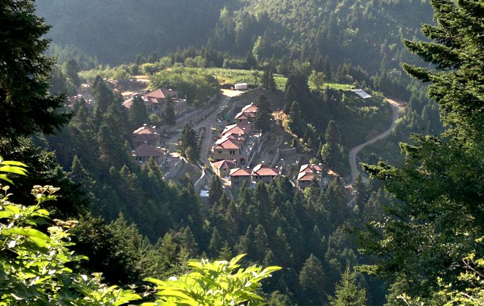 Montanema