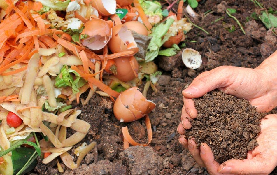 Μην πετάτε τα οργανικά σκουπίδια: Κάντε κομποστοποίηση!