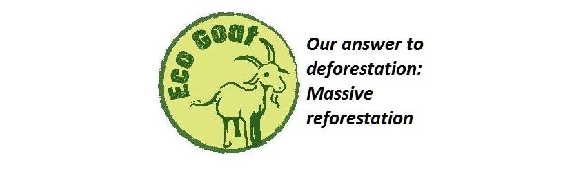 Eco Goat
